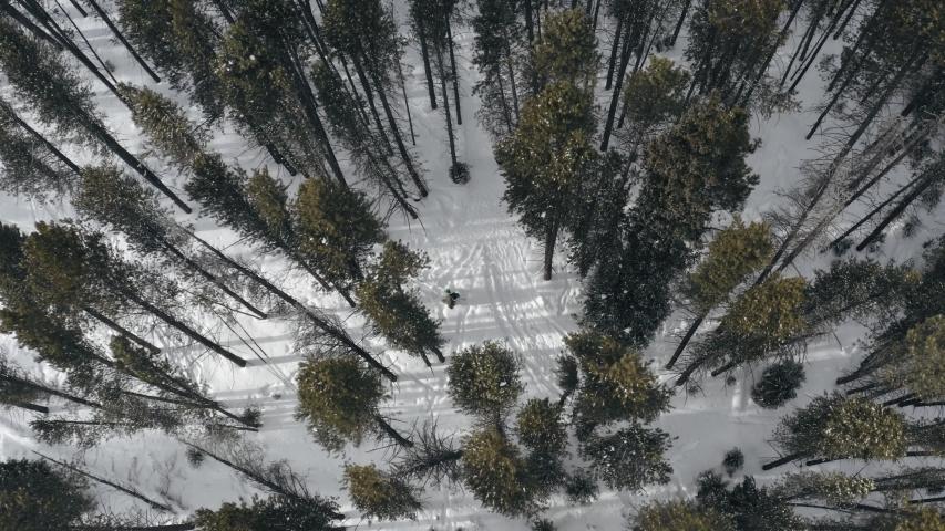 Aerial birds eye view of snowboarder walking with board in windy winter forest | Shutterstock HD Video #1054732115