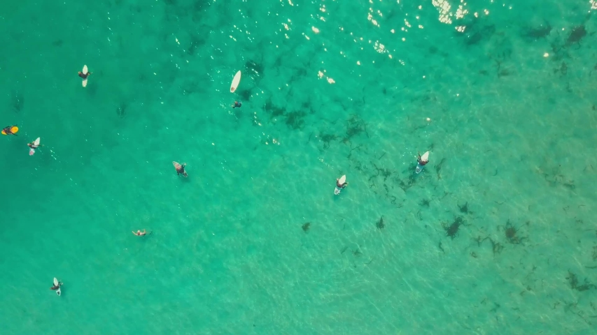 A Group Of Surfers in the middle of The Sea Waiting For Waves To Ride in a surfing competition. Aerial view