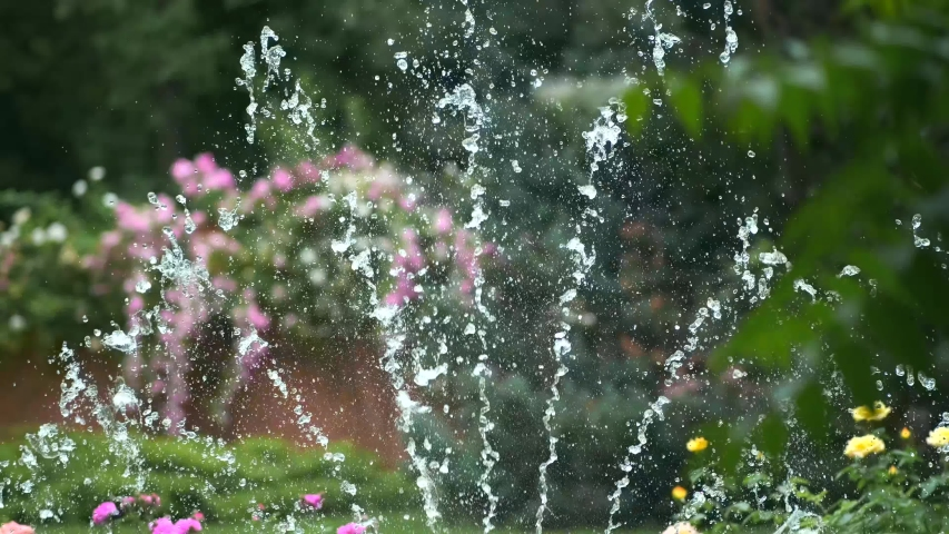 Splashing water drops of a summer fountain in the park against a pink rose Bush. Close-up of the fountain in the garden. | Shutterstock HD Video #1054732646