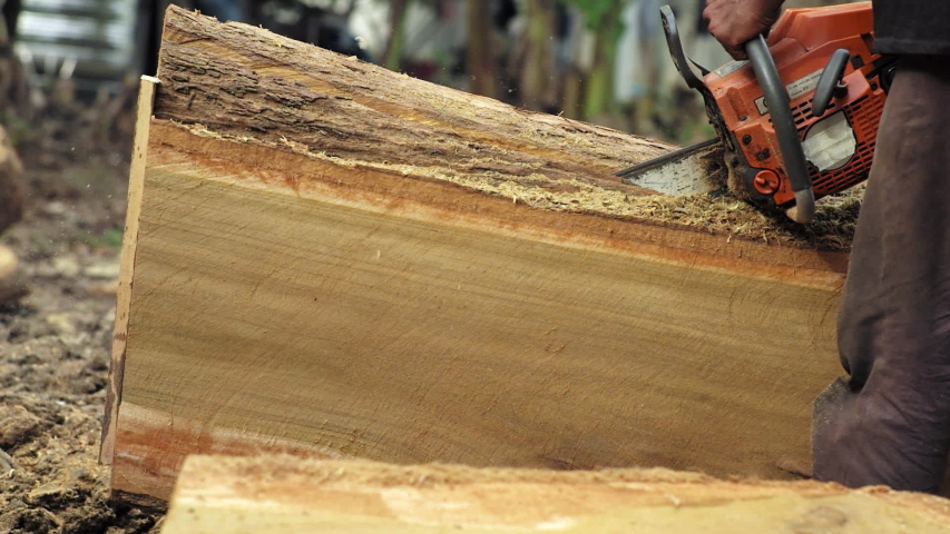 Arborist sawing the log by chainsaw | Shutterstock HD Video #1054733663