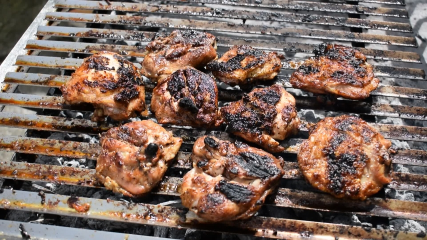 Pieces of steaming grilled chicken | Shutterstock HD Video #1054734551