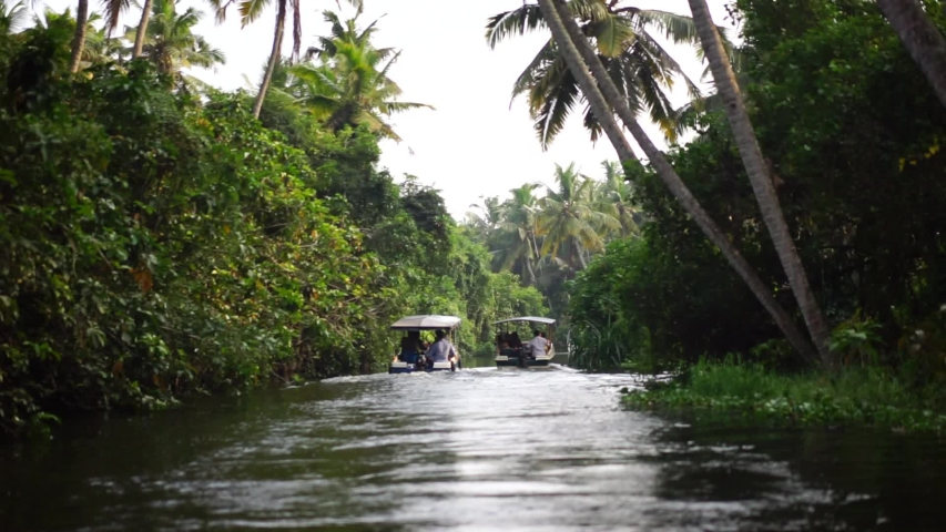 Boat and Palm tree backwater in India Timelapse | Shutterstock HD Video #1054736033