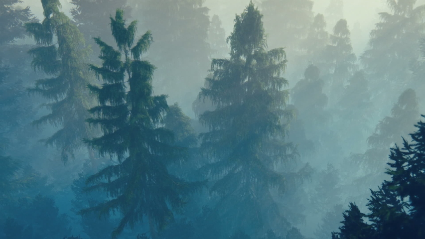 Flight over pine forest covered with morning fog | Shutterstock HD Video #1054742540