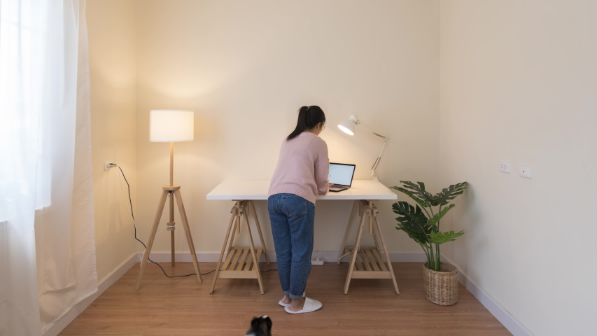 Timelapse of asian woman with pet set up room for work from home in quarantine social distance work remotely concept. New office setup, cleaning housework in new normal asia life or home decoration. Royalty-Free Stock Footage #1054748552