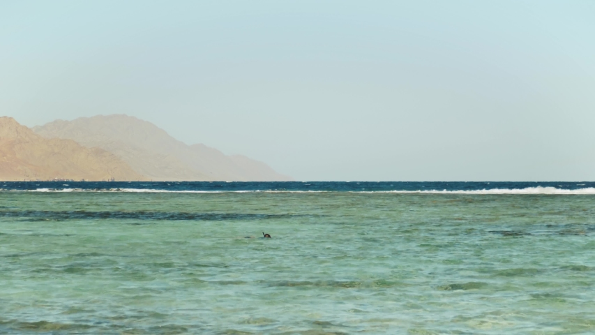 Man snorkeling in red sea, Beautiful landscape of blue sea and clear sky, waves in the sea and mountains on horizon Egypt, Dahab, 4k
