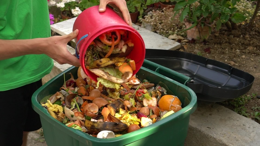 Sustainable living. Food and Green organics. Bio waste bin. Kitchen food scraps including fruit, vegetables and egg shells. Separate waste collection
