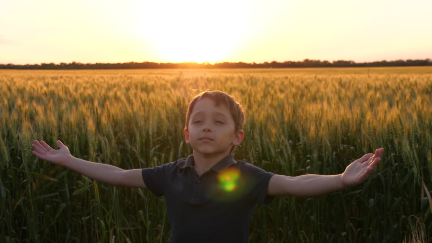 The happy boy raises his hands to the sky, circling and enjoying nature. Agriculture, the concept of happiness and freedom. Royalty-Free Stock Footage #1054912814