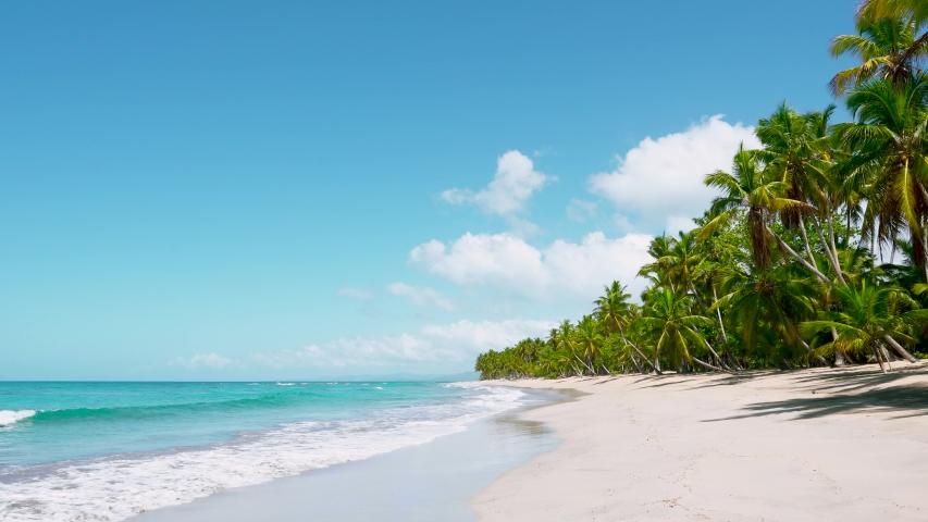 Sea waves seamless loop on the white Hawaiian sand beach . Walk on a tropical natural sandy beach. Palm trees, blu sea, and clear sand landscape. Paradise beach | Shutterstock HD Video #1054917566