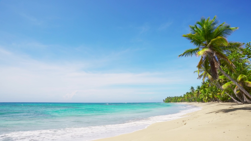 Walk on the beautiful palm beach. Turquoise Caribbean sea water at the white sand beach Punta Cana Dominican republic. Tropical seaside beach with azure water and big white waves.  | Shutterstock HD Video #1054918745