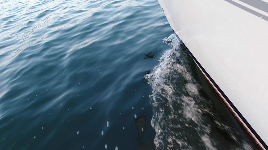 View from the deck of the yacht at the bow, closeup. Side view with green sea and waves. Slow motion | Shutterstock HD Video #1054927007