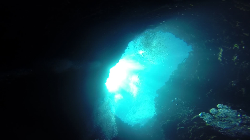Palau diving withe beautiful blue ocean