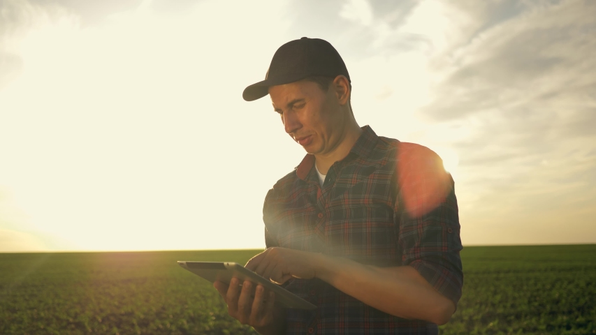 Farmer agronomist in field wheat at sunset. Ecoculture farm. Senior farmer, business owner looks in tablet in field wheat. Senior agronomist with tablet in hands. Farmer agronomist checks eco-crops Royalty-Free Stock Footage #1055088635