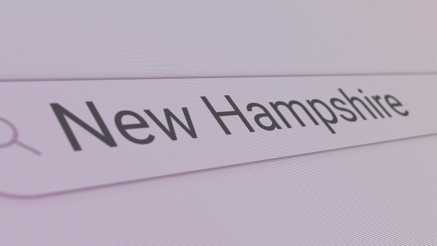 New Hampshire Search Bar  Close Up Single Line Typing Text Box Layout Web Database Browser Engine Concept