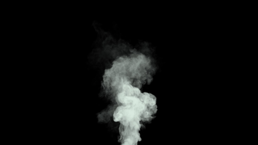 Short Smoke Billow - Fast moving smoke billow with high density and turbulence. | Shutterstock HD Video #1055128106