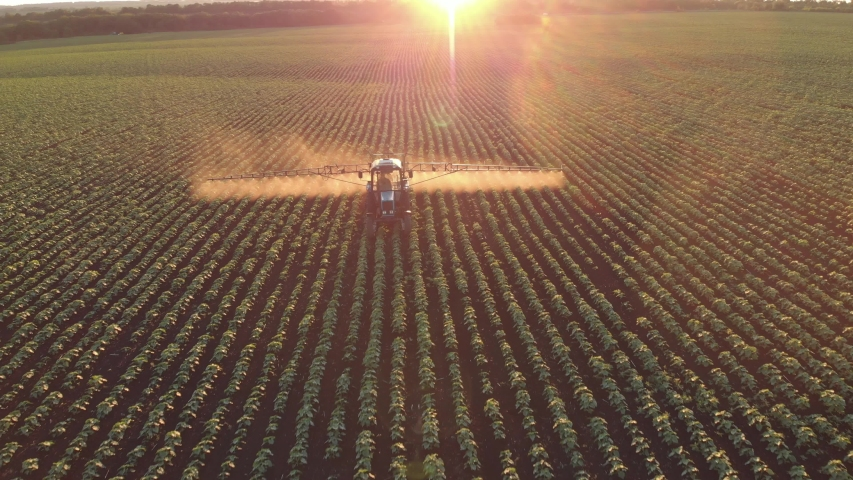 Aerial view of farming tractor spraying on field with sprayer, herbicides and pesticides at sunset. Farm machinery spraying insecticide to the green field, agricultural natural seasonal spring works. Royalty-Free Stock Footage #1055183102