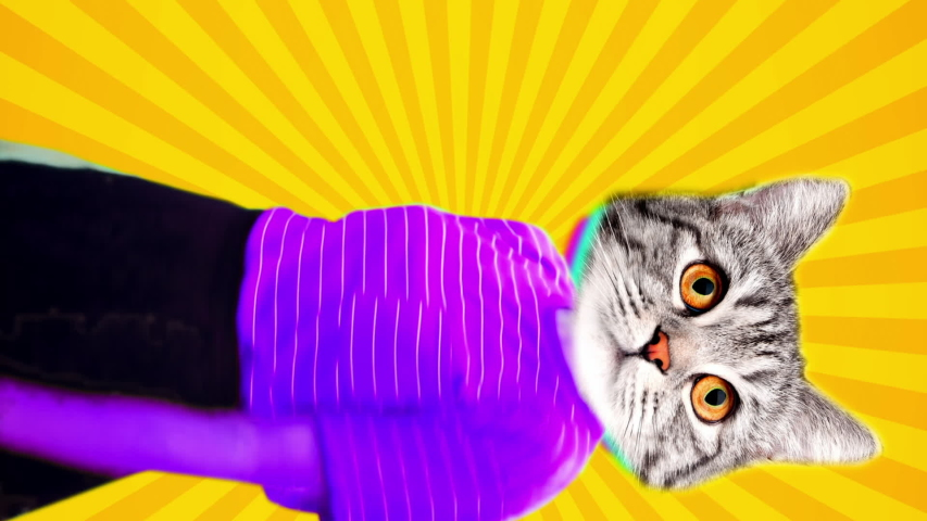 Vertical animation of cat head dancing body. Bright pop colors make this trendy video. Royalty-Free Stock Footage #1055214305