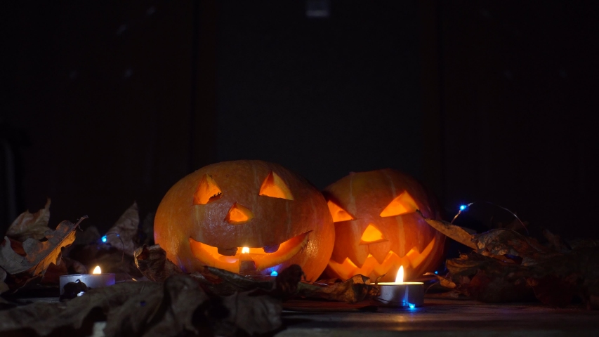 A black cat sits and looks at the camera, next to two pumpkins, in their eyes is a fire. Darkness, night, leafy leaves on the table. | Shutterstock HD Video #1055234558