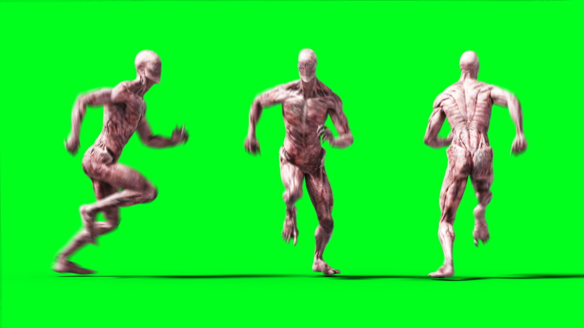 Scary monster animation. Phisical, motion, blur. Realistic 4k animation. Green screen | Shutterstock HD Video #1055244254