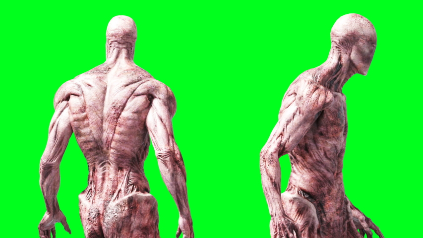 Scary monster animation. Phisical, motion, blur. Realistic 4k animation. Green screen | Shutterstock HD Video #1055244257
