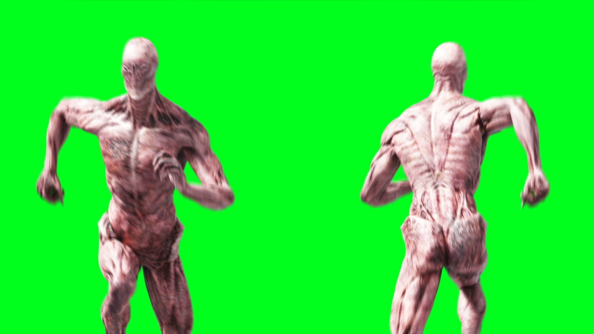 Scary monster animation. Phisical, motion, blur. Realistic 4k animation. Green screen | Shutterstock HD Video #1055244263