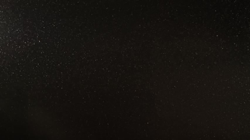 Dust particles background. Grain texture. Defocused white powder flying on dark. | Shutterstock HD Video #1055272556