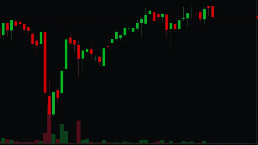 An animation of the red and green candle sticks from a stock market traders computer monitor, moving up and down in full flow as the trading day progresses.   Shutterstock HD Video #1055311391