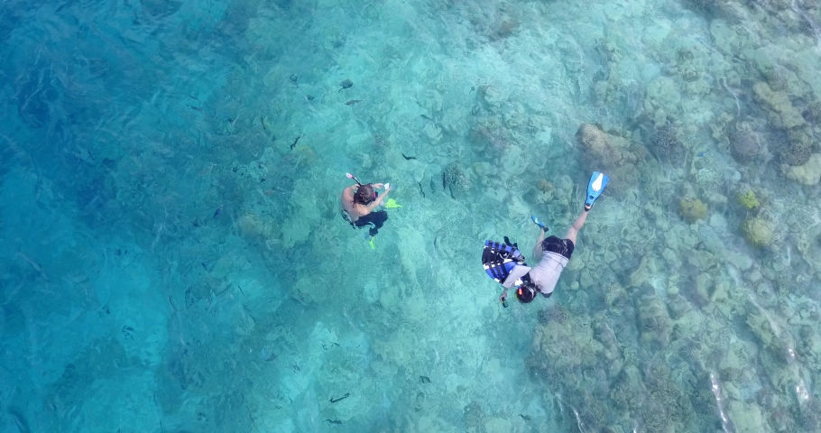Slow motion, aerial view of two Caucasian girls snorkeling around the coral reefs and exploring the school of fish, zoom out. | Shutterstock HD Video #1055319419
