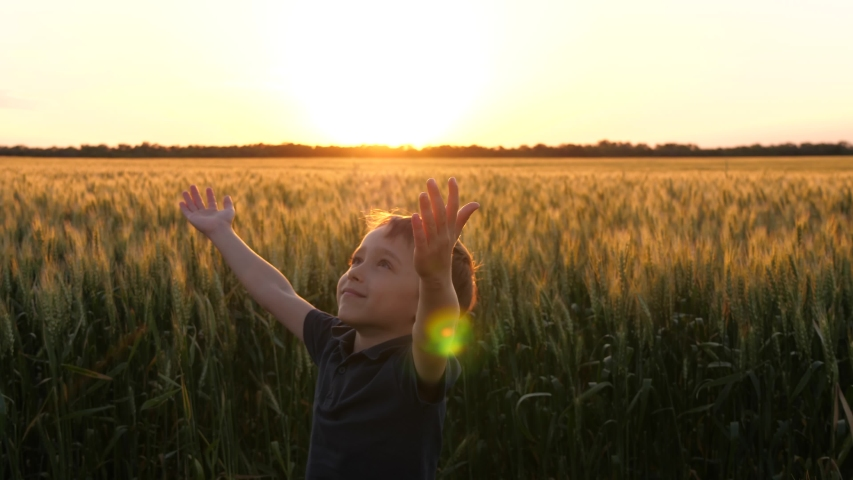 The happy boy raises his hands to the sky, circling and enjoying nature. Agriculture, the concept of happiness and freedom. teamwork hands Royalty-Free Stock Footage #1055326394