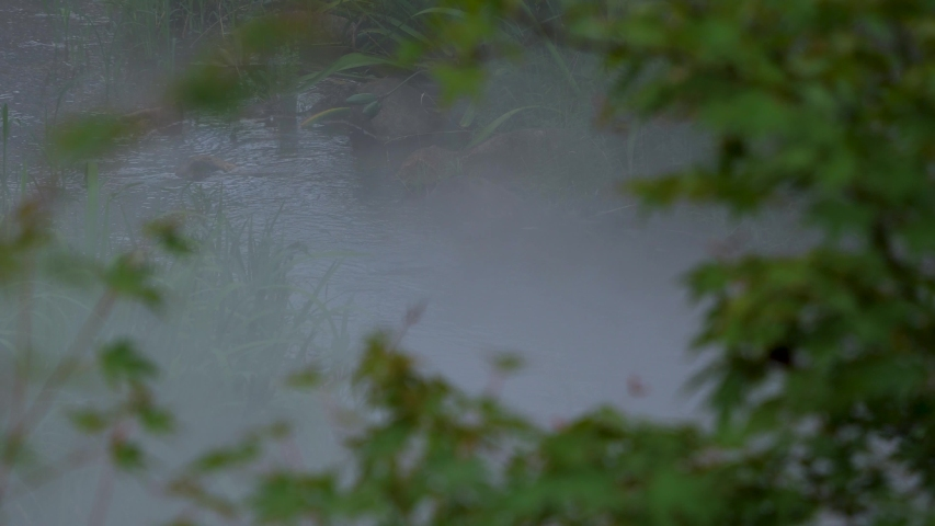 Water flowing in the summer river where fog can be caught in the early morning | Shutterstock HD Video #1055347907