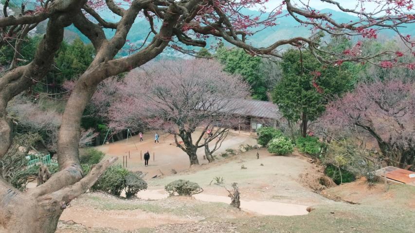 Beautiful view of mountains and trees. Estabilish shot of Arashiyama park, Kyoto Japan. | Shutterstock HD Video #1055352518