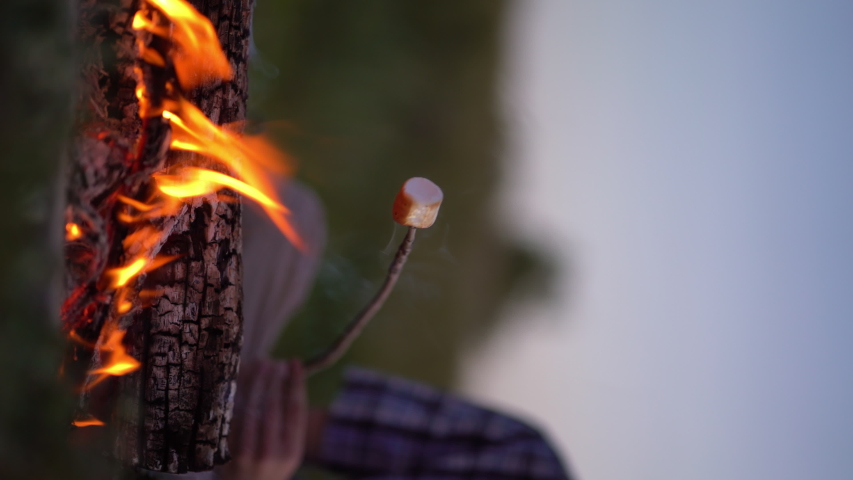 Vertical video. Young tourist roasting marshmallow over the bonfire near camping. | Shutterstock HD Video #1055367761