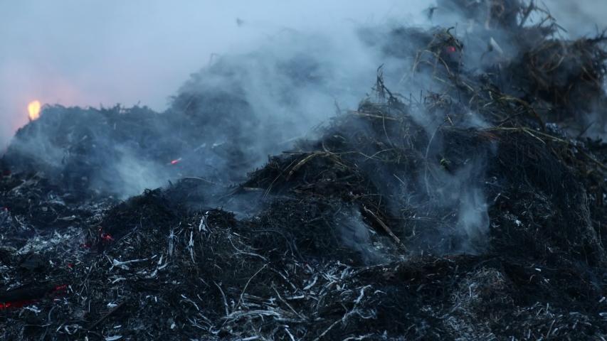 Dry grass smolders and smokes closeup. Last year's grass burning   Shutterstock HD Video #1055387999