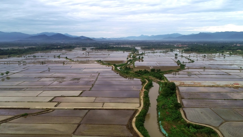 Aerial view of agricultural farmland that was filled by water in the early stage of plantation | Shutterstock HD Video #1055388296