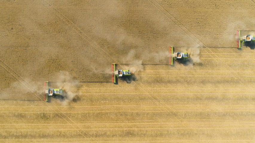 Top down view of Harvester machines working in wheat field . Combine agriculture machine harvesting golden ripe wheat field. Royalty-Free Stock Footage #1055405060