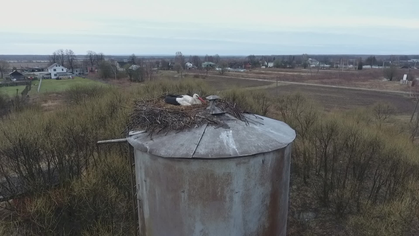 White storks made their nest on a metal water tower and is guarding the eggs, the view from the air | Shutterstock HD Video #1055553722