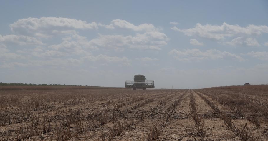 The combine goes on a freshly mowed rapeseed field.   Shutterstock HD Video #1055554019