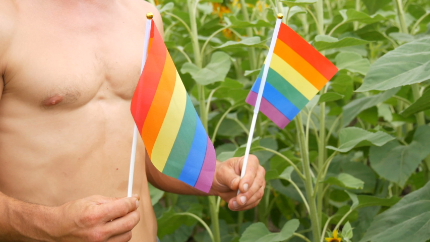 Beautiful body of a young man athletic man with beautiful muscles holds a rainbow Gay pride LGBT flag in his hands a symbol of unconventional orientation, against of blooming sunflowers in summer. | Shutterstock HD Video #1055554706