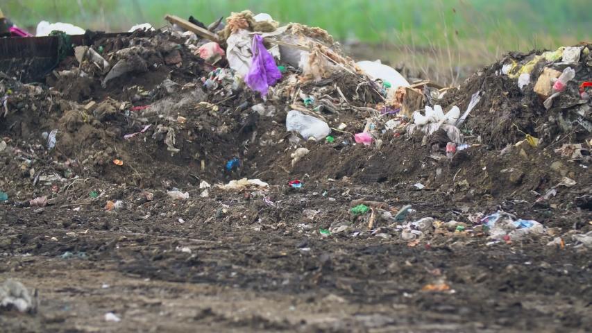 Caterpillar bulldozer shovel pushes debris one heap   Shutterstock HD Video #1055556020