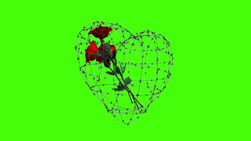 3D rendering. Animation of a bouquet of roses in barbed wire in the form of a heart on a green background. | Shutterstock HD Video #1055565146