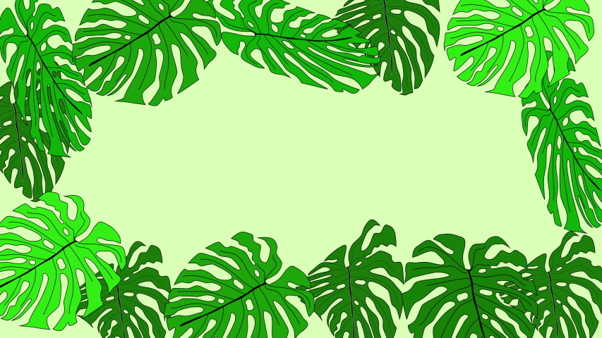Green monstera and palm leaves forming beautiful frame and colourful background. Copy space. | Shutterstock HD Video #1055570963