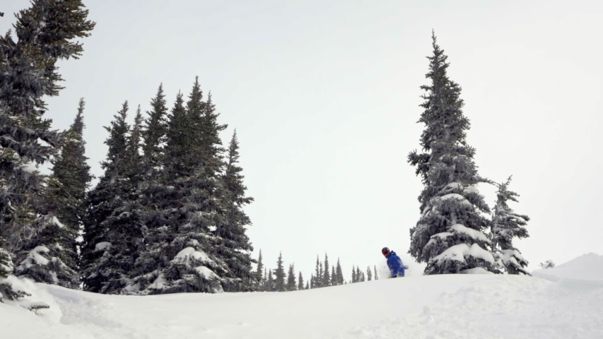Snowboarder in Fresh Snow in trees with Slow mo Slash 120FPS   Shutterstock HD Video #1055650763