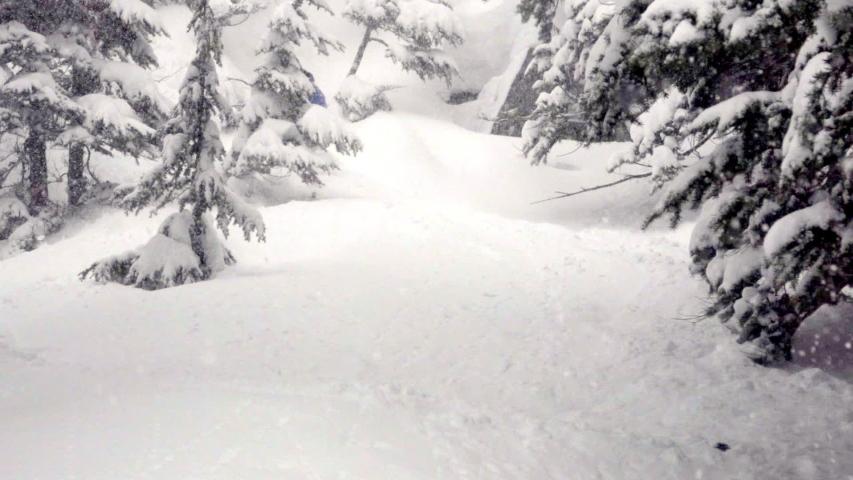 Stormy Snowboarder in Fresh Snow Slashing snow 120FPS   Shutterstock HD Video #1055650784
