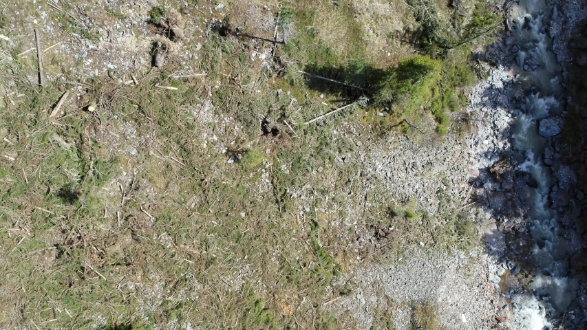 Aerial of uprooted forest in south tyrol after strong storm. Alpine valley   Shutterstock HD Video #1055651858