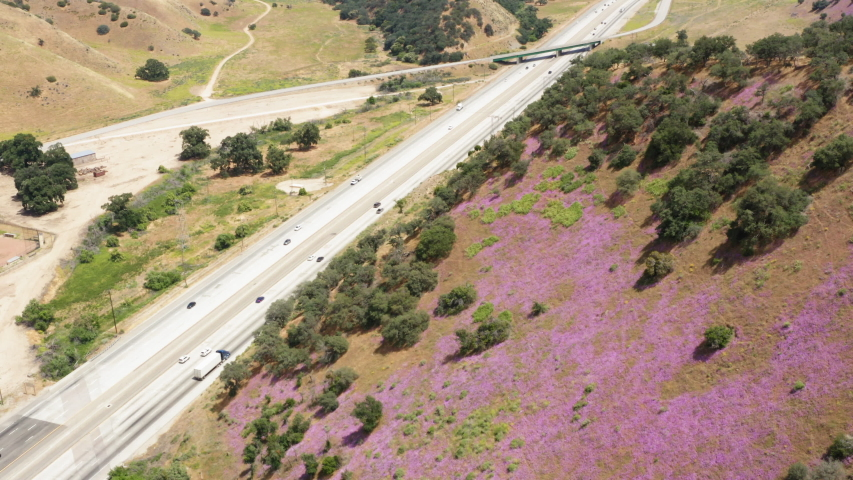 Aerial Tilt Down Shot Pink Wildflowrs On Hill Side With I-5 Highway in Background | Shutterstock HD Video #1055681402