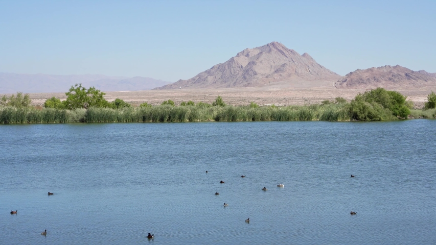 Beautiful landscape of Henderson Bird Viewing Preserve at Nevada | Shutterstock HD Video #1055687804