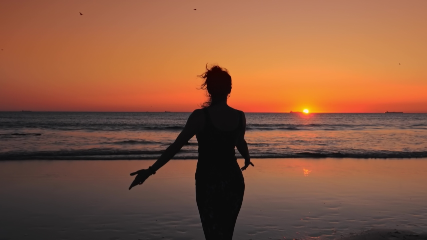 Happy slim woman with arms raised up on the beach at sunset, birds flying over your head Royalty-Free Stock Footage #1055727710