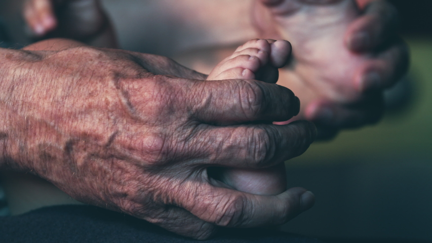 The old wrinkled hands hold little legs. slow motion   Shutterstock HD Video #1055912357