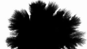 Set of 5 video transitions of black expanding paint stains on white backdrop. Can be used as a graphic element, a luma matte to reveal images or transition between clips.