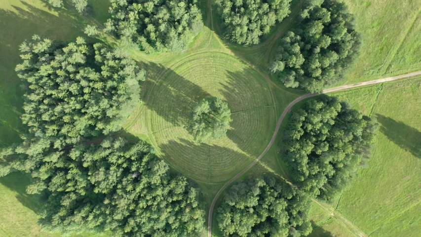 aerial view of a circle of white birches in Pavlovsky park. Green trees. round Avenue of birches. Aerial view from the top. | Shutterstock HD Video #1056086885