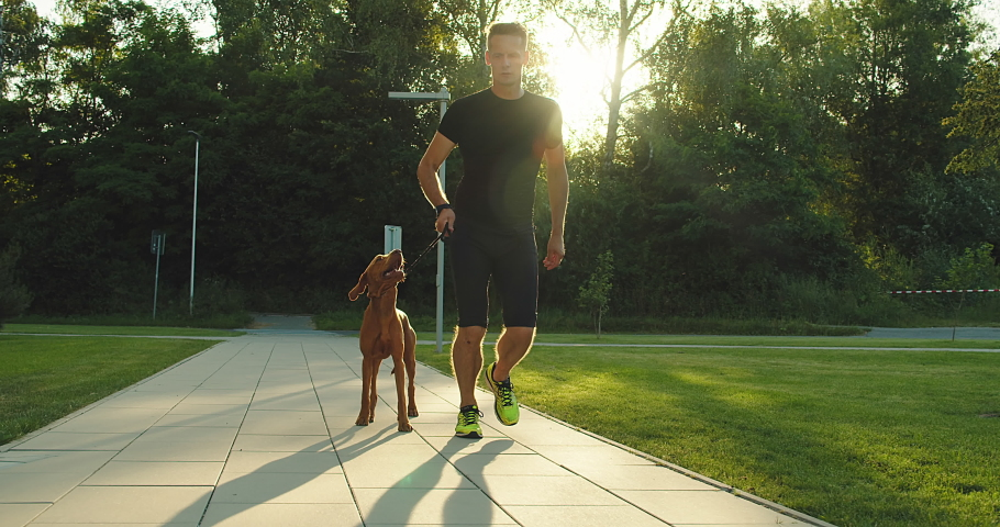 Silhouettes of runner and dog on city street under sunrise sky in morning time. Outdoor walking. Athletic young man jogging, working out with his dog are running in town. 4K video SLOW MOTION | Shutterstock HD Video #1056157430